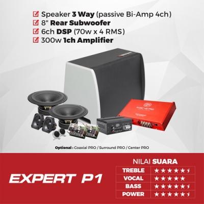 EXPERT P1